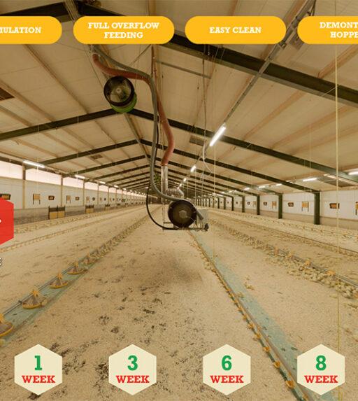 Een virtuele tour in een LANDMECA pluimveestal